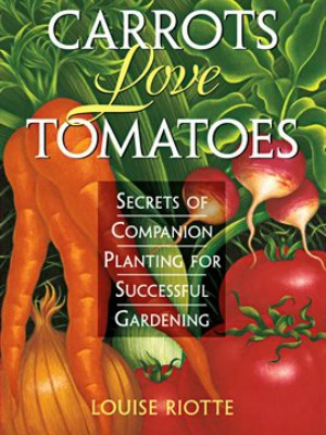 CarrotsLoveTomatoes